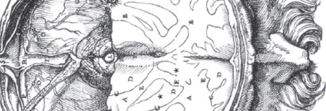 Vesalius, De humani corporis fabrica libri septem (detail)