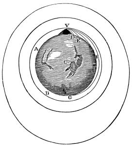 Principia1846-513